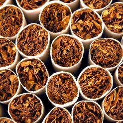 Tobacco 1