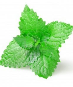 Green Mint Flavour 1