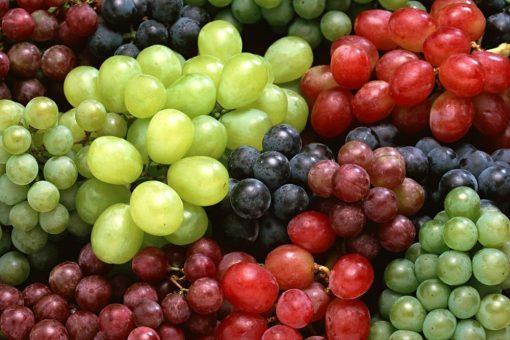 Grape Flavour 1