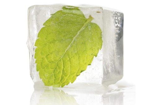 ICE Mint Flavour 1
