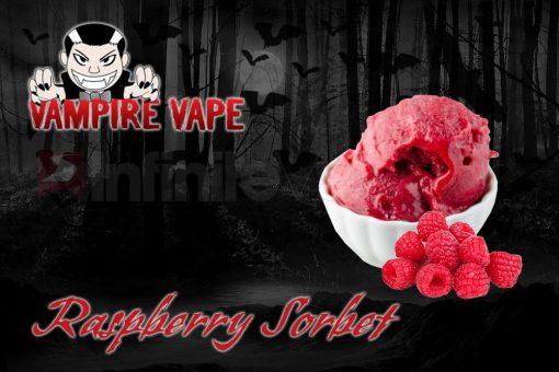 Rasberry Sorbet 1