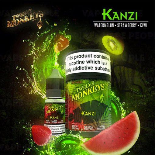 Kanzi by Twelve Monkeys