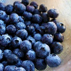 Blueberry eliquid Flavour 2